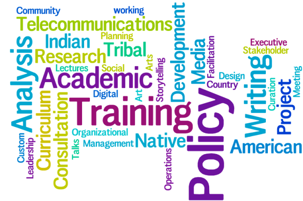Word cloud of Homahota Consulting's Area's of Expertise